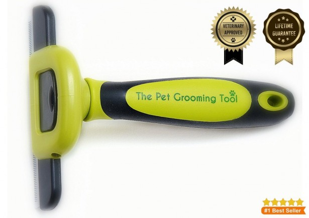 02 The Pet Grooming Tool