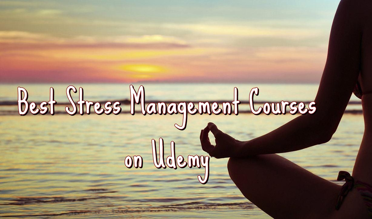 Best Udemy Courses for Stress Management | Ranking Squad